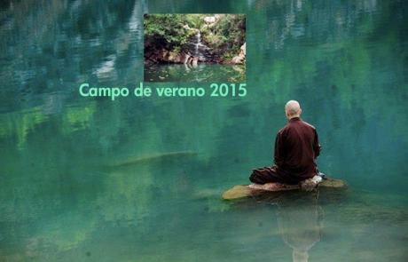 Campo_Verano_2015.png