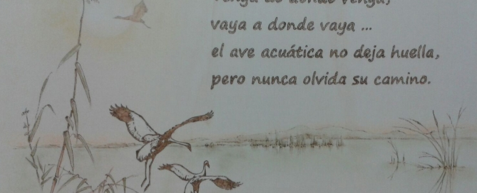 ave acuatica