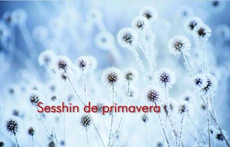 sesshin_primavera_2016