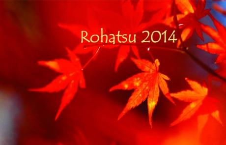 rohatsu_20141