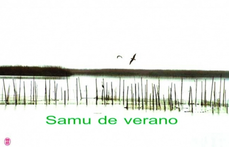 samu-de-verano