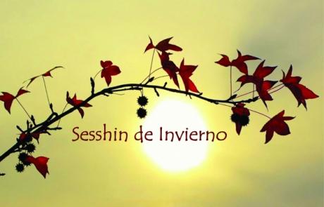 sesshin-invierno