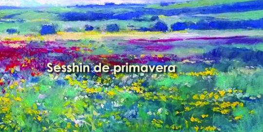 sesshin_primavera