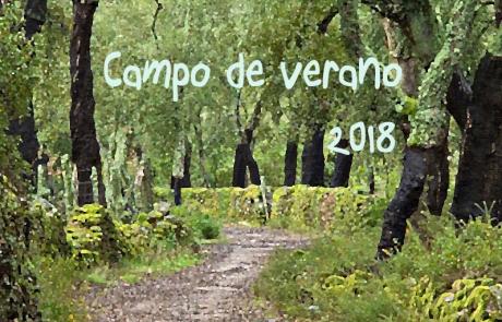 2018 campo de verano_s