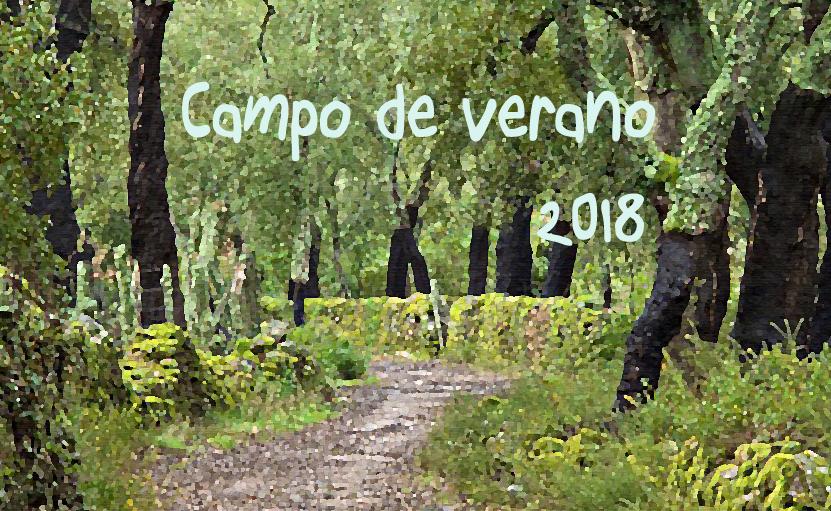 2018-campo-de-verano_s1