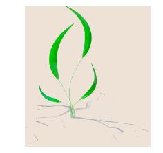 puerto_logo